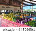 フィジー 市場 野菜 観光 44509601