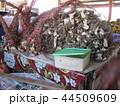 フィジー 市場 カバ 観光 44509609