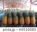 フィジー 市場 パイナップル 観光 44510083