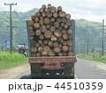 フィジー 観光 車窓の風景 木材を満載したトラック 44510359