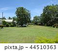フィジー 観光 ビセイセイ村の風景 パンの木 44510363