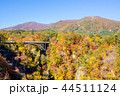 【宮城県】鳴子峡の紅葉 44511124