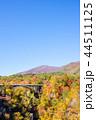【宮城県】鳴子峡の紅葉 44511125