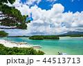 石垣島 海 リゾートの写真 44513713