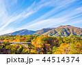 【宮城県】鳴子峡の紅葉 44514374