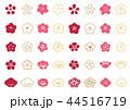 花 梅 紅梅のイラスト 44516719