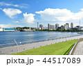 横浜 みなとみらい 大さん橋の写真 44517089