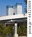 豊洲市場 市場 東京都中央卸売市場の写真 44523609