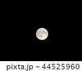 満月 月 夜の写真 44525960