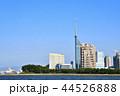 福岡タワー 福岡 晴れの写真 44526888