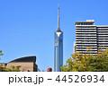 福岡タワー 福岡 晴れの写真 44526934
