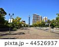 福岡タワー 福岡 晴れの写真 44526937