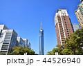 福岡タワー 福岡 晴れの写真 44526940