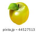果物 林檎 果実のイラスト 44527513