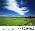 青空 風景 雲の写真 44529408