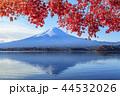 河口湖 紅葉 富士山の写真 44532026
