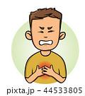 ハート ハートマーク 心臓のイラスト 44533805