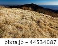 丹沢表尾根・三ノ塔の草原から見る大山 44534087