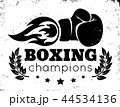 ボクシング 拳闘 ポスターのイラスト 44534136