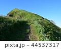 利尻島 ペシ岬 山の写真 44537317