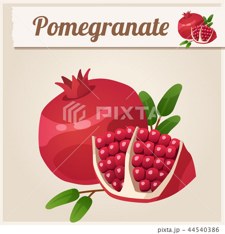 Detailed Icon. Pomegranate. 44540386