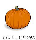 orange pumpkin cartoon vector 44540933