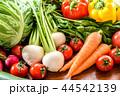 たくさんの野菜 木目テーブル 44542139