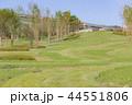 国営明石海峡公園 公園 風景の写真 44551806