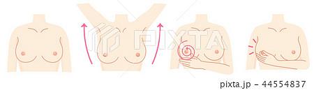 乳がん 自己検診セット 44554837