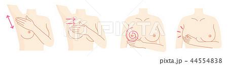 乳がん 自己検診セット 44554838