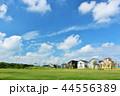 青空 晴れ 住宅街の写真 44556389