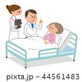 入院 患者と医師と看護師 44561483