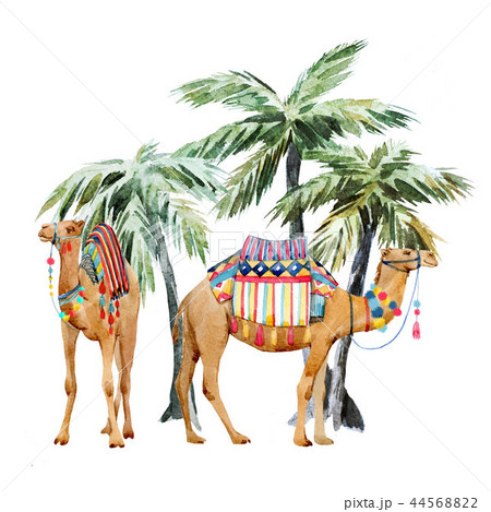 Watercolor camel and palm composition 44568822