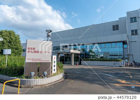 東京都がん検診センター 44570120