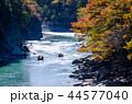 秋 渓谷 紅葉の写真 44577040