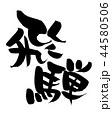 飛騨 筆文字 文字のイラスト 44580506