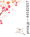 梅の花 年賀&寒中見舞い テンプレートB 水彩 イラスト 44582657