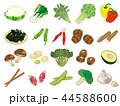 食材イラスト【野菜アイコン集】② 44588600