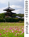 奈良斑鳩の里・秋の法起寺6(無人) 44589899