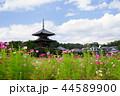 奈良斑鳩の里・清々しい秋の法起寺1 44589900