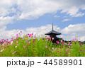 奈良斑鳩の里・清々しい秋の法起寺2 44589901