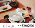 箸でごはんを食べる日本人女性の手元 44590250