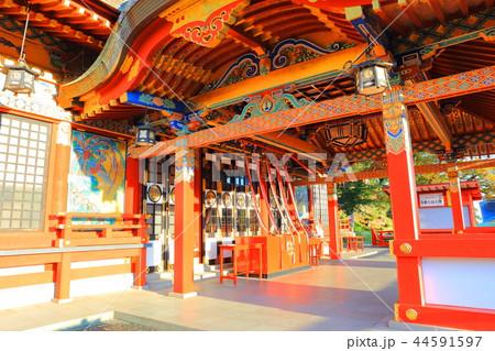 朝日を浴びる秋の祐徳稲荷神社(佐賀県鹿島市) 44591597