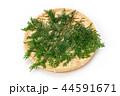 檜 桧 葉の写真 44591671