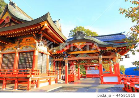 朝日を浴びる秋の祐徳稲荷神社(佐賀県鹿島市) 44591919