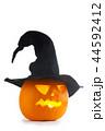 ハロウィン かぼちゃ カボチャの写真 44592412