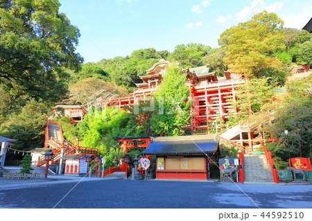 朝日を浴びる秋の祐徳稲荷神社(佐賀県鹿島市) 44592510