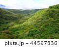 八ヶ岳 八ヶ岳高原 高原の写真 44597336