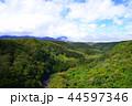 八ヶ岳 八ヶ岳高原 高原の写真 44597346
