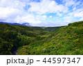 八ヶ岳 八ヶ岳高原 高原の写真 44597347